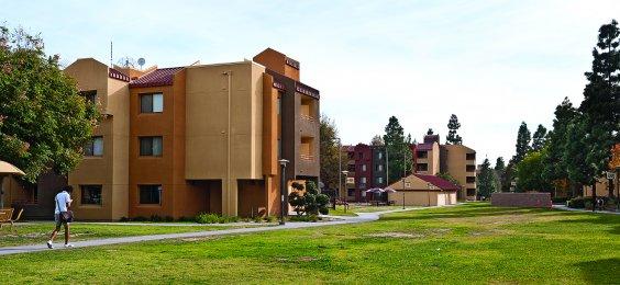 Noritz University Commercial 7